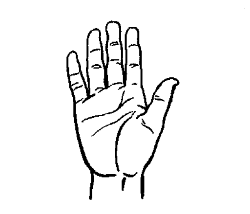 Hand drawing png. File wikimedia commons filehand