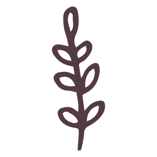 hand drawn branch png