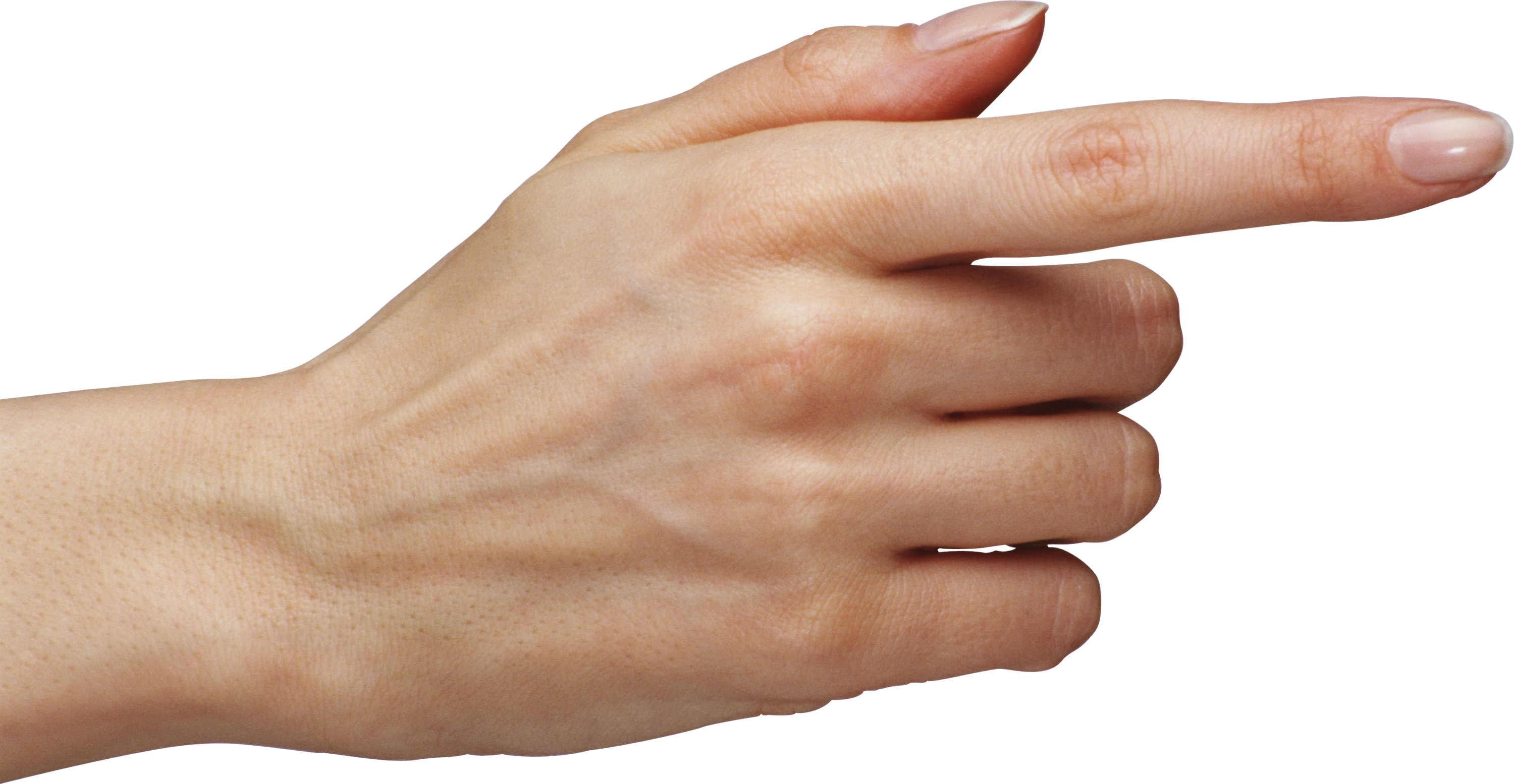 Hand finger png. One image purepng free
