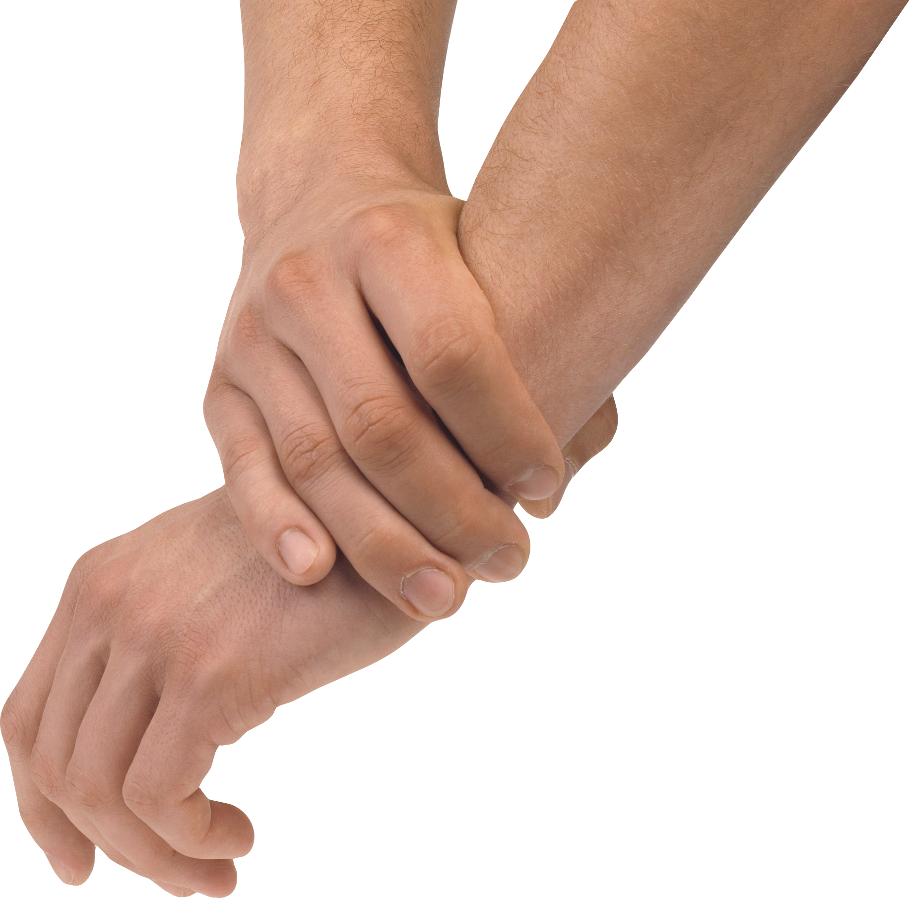 Hand holding png. Hands free images pictures
