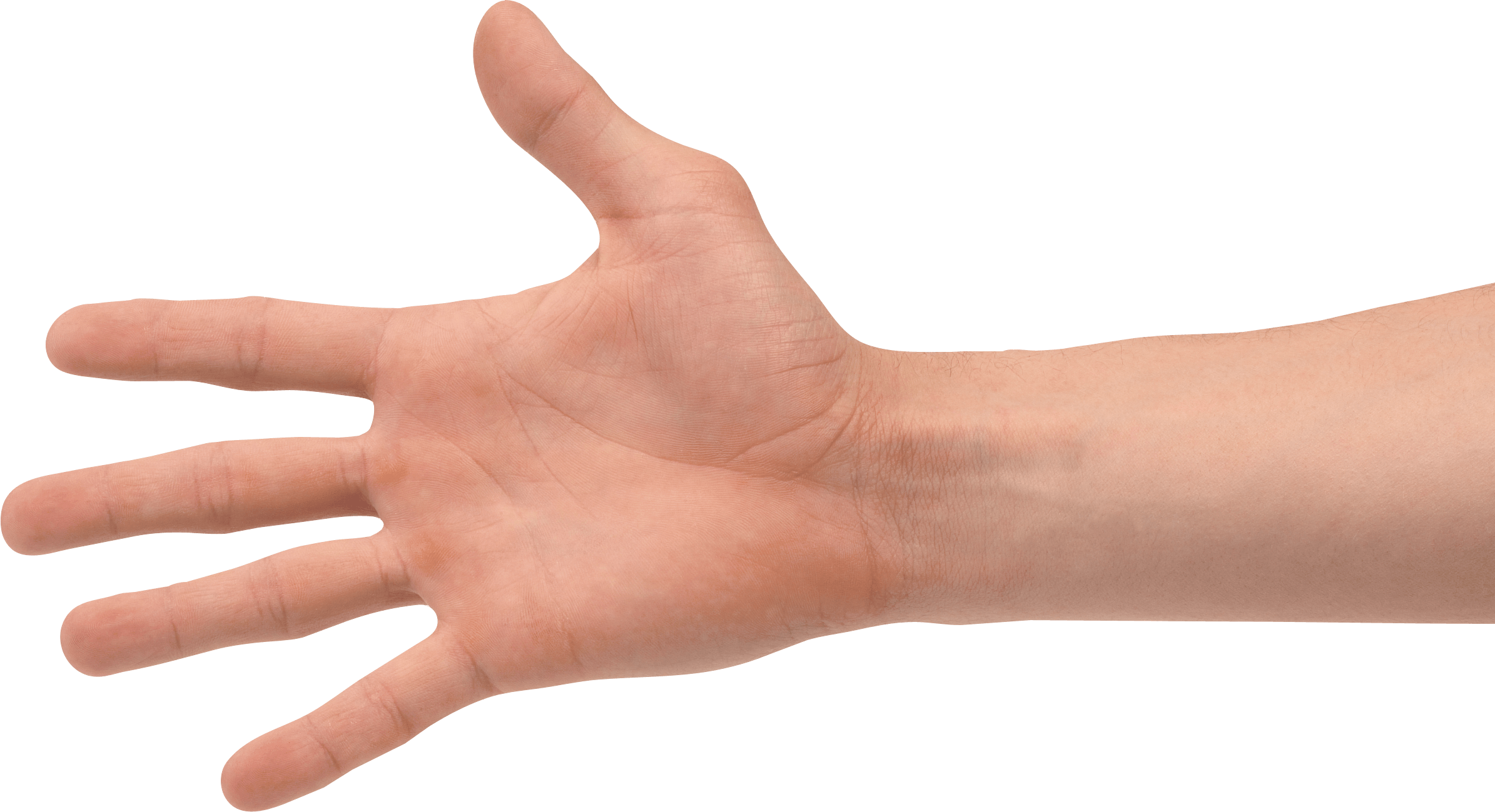Transparent arms human. Hands png images pluspng