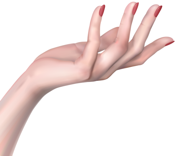 Hand png. Woman clip art image