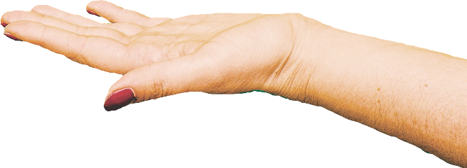 Hand reaching out png. Images in collection page