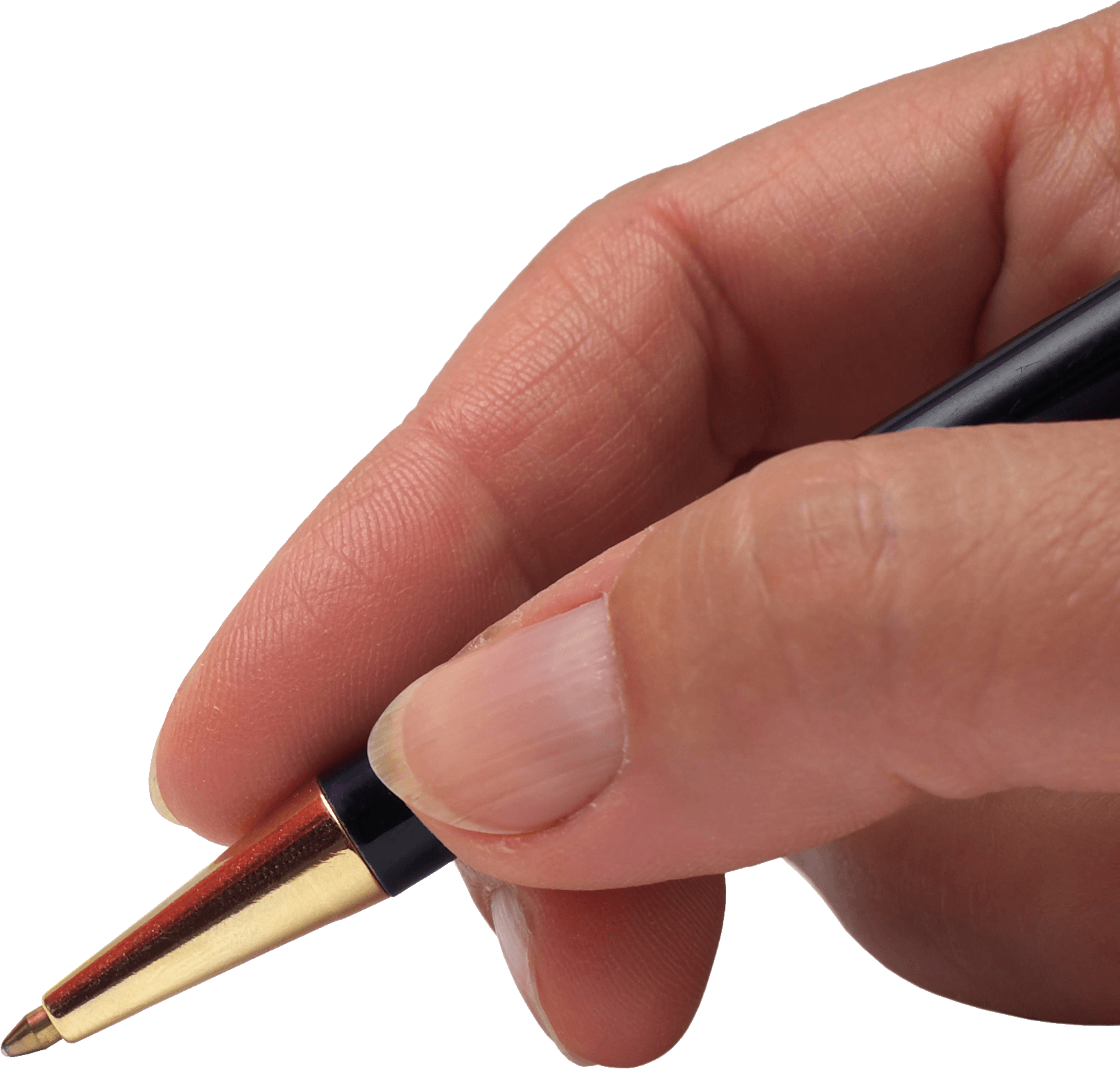 Hand with pen png. Holding transparent stickpng