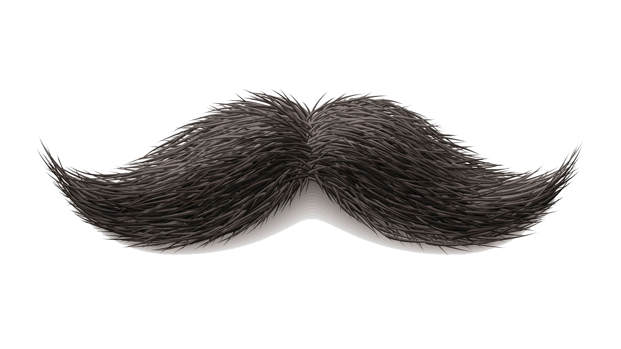 handle bar mustache png
