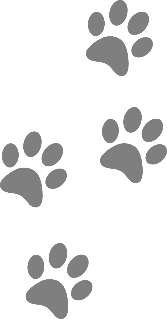 Pawprint svg yorkie. Dog footprints animal paw