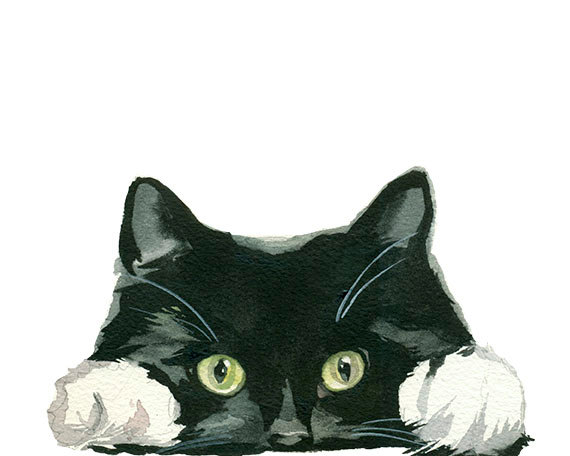 Hands clipart cat. Pin by once upon