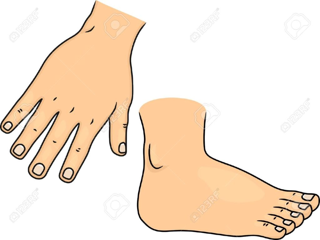 Hands clipart pencil. Cartoon foot and in