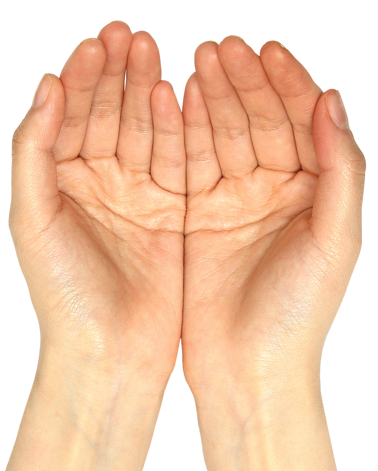 Hand out png. Hands clipart picture gallery