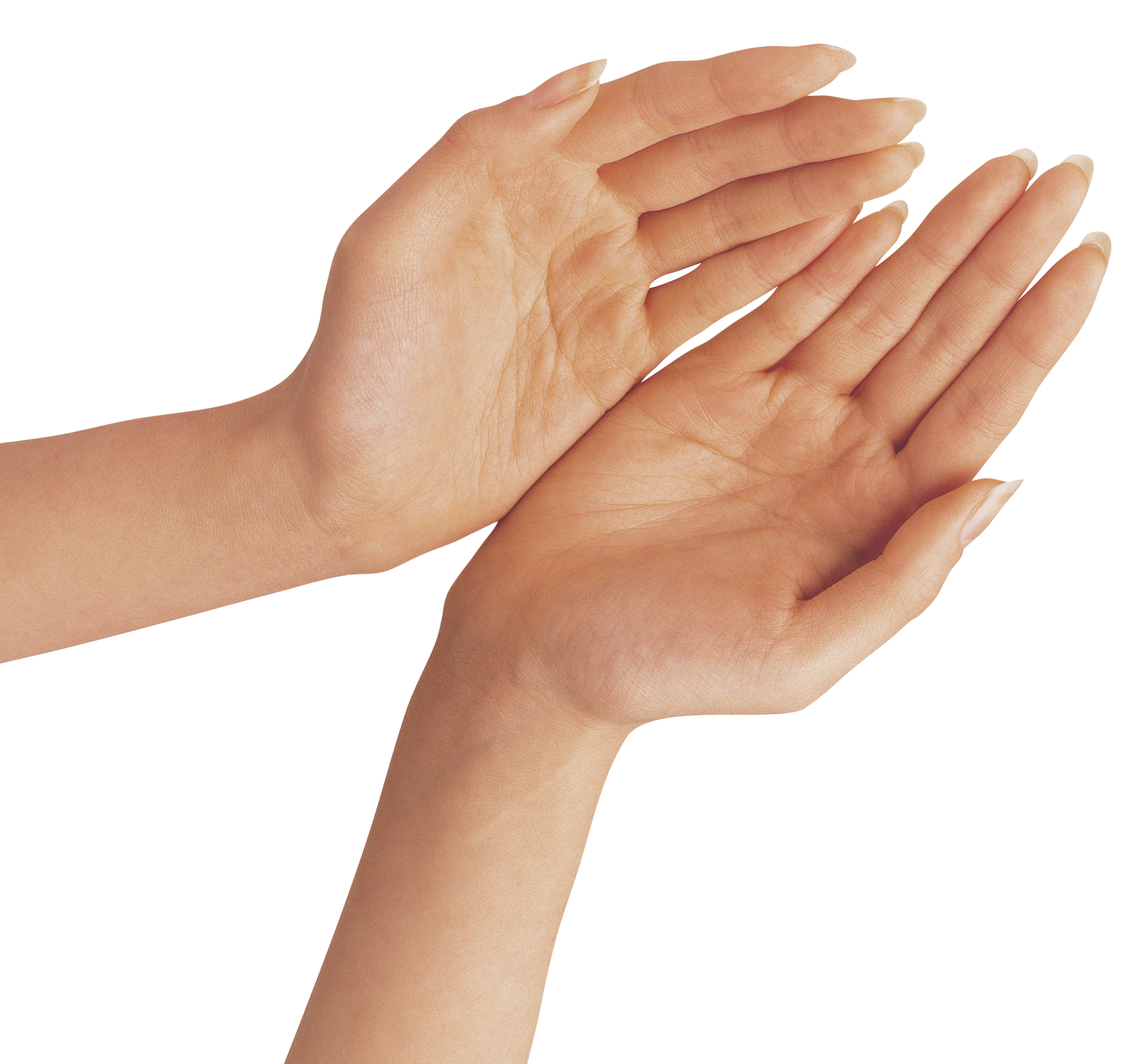 Hands together png. Two clipart image gallery