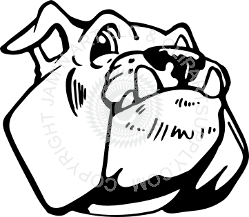 Happy clipart bulldog. Head