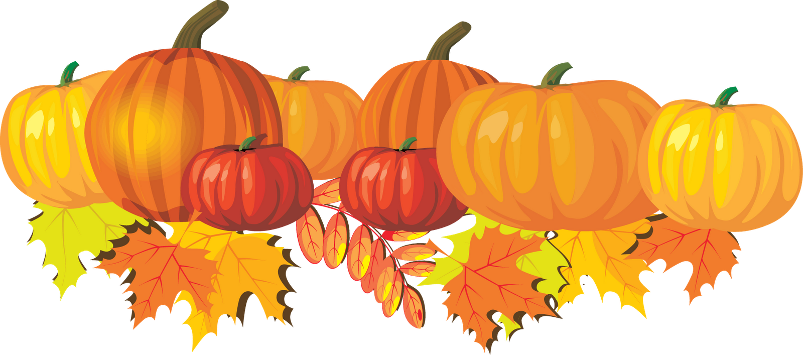 Happy fall png. Thanksgiving transparent pictures free