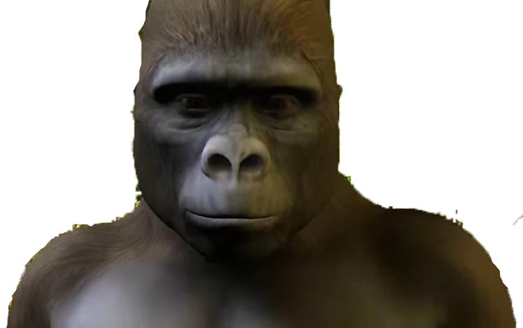Harambe face png. Image steven universe wiki
