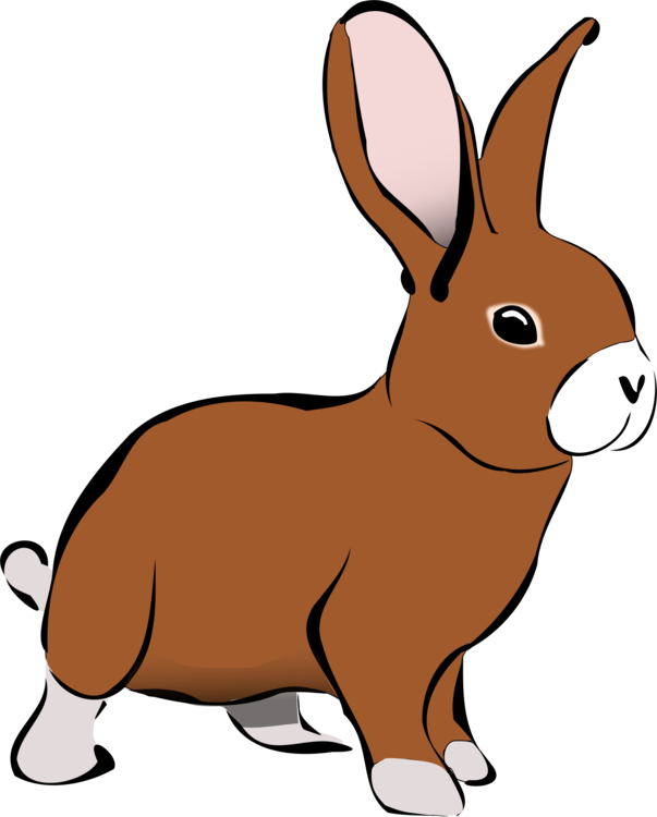 Hares drawing kid. Easter bunny hare domestic