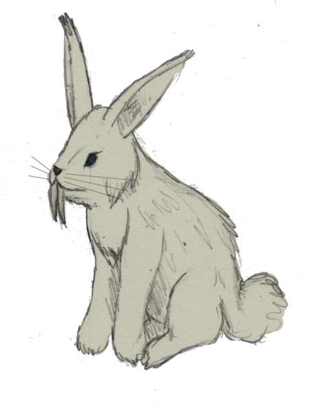 Hares drawing snow hare. Swedesian saber tooth bunny