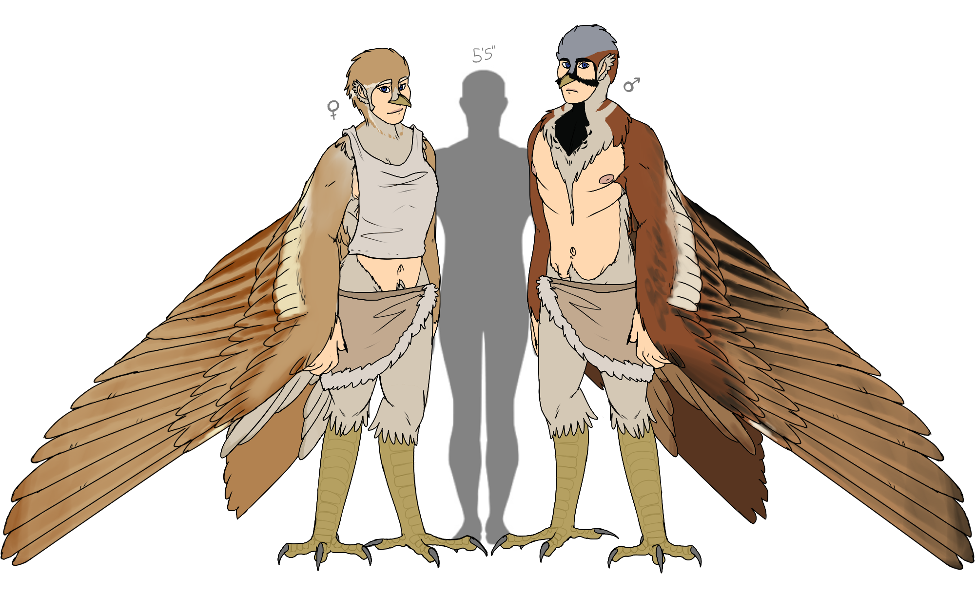 Slayer of khusta wikia. Harpy drawing svg transparent stock