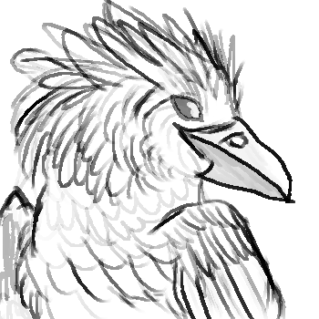 Harpy drawing. Eagle crow mix by