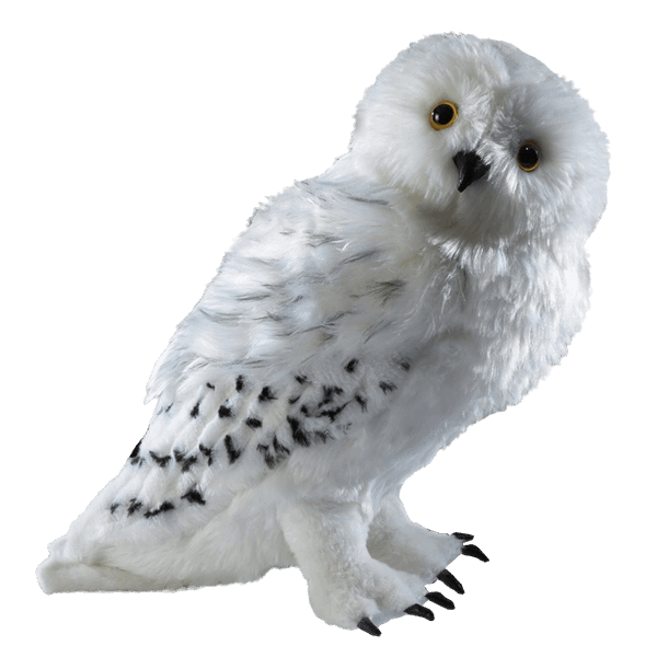 Harry potter owl png. Hedwig the collector s