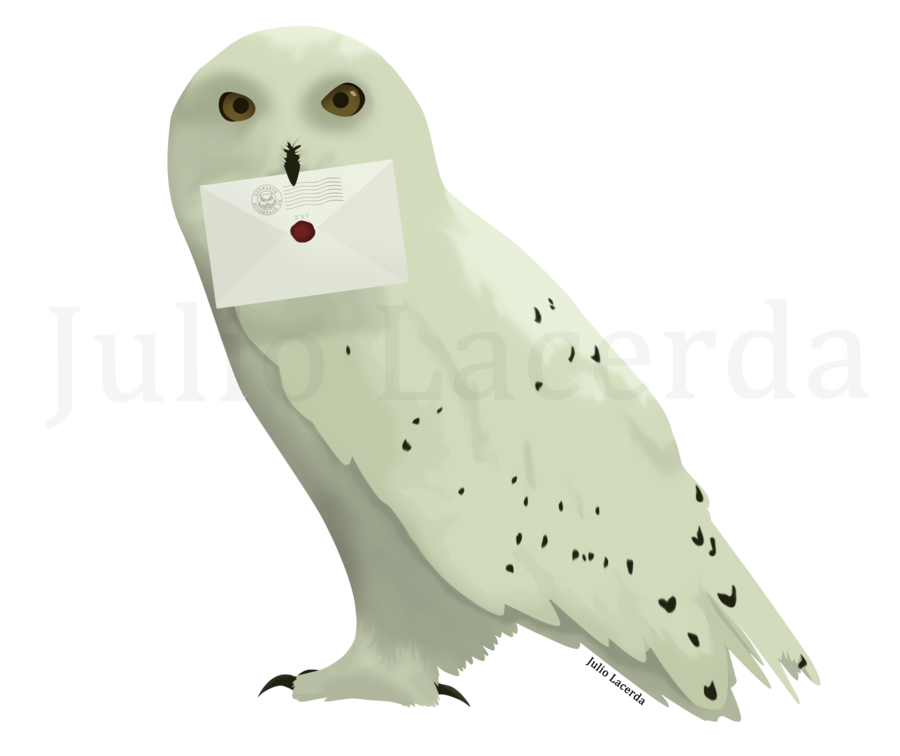 Harry potter owl png. Post office by julio