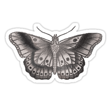 Harry styles butterfly tattoo png. By bohemianmermaid on the