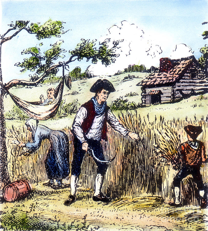 Harvest clipart colonial farming. Photograph by granger th