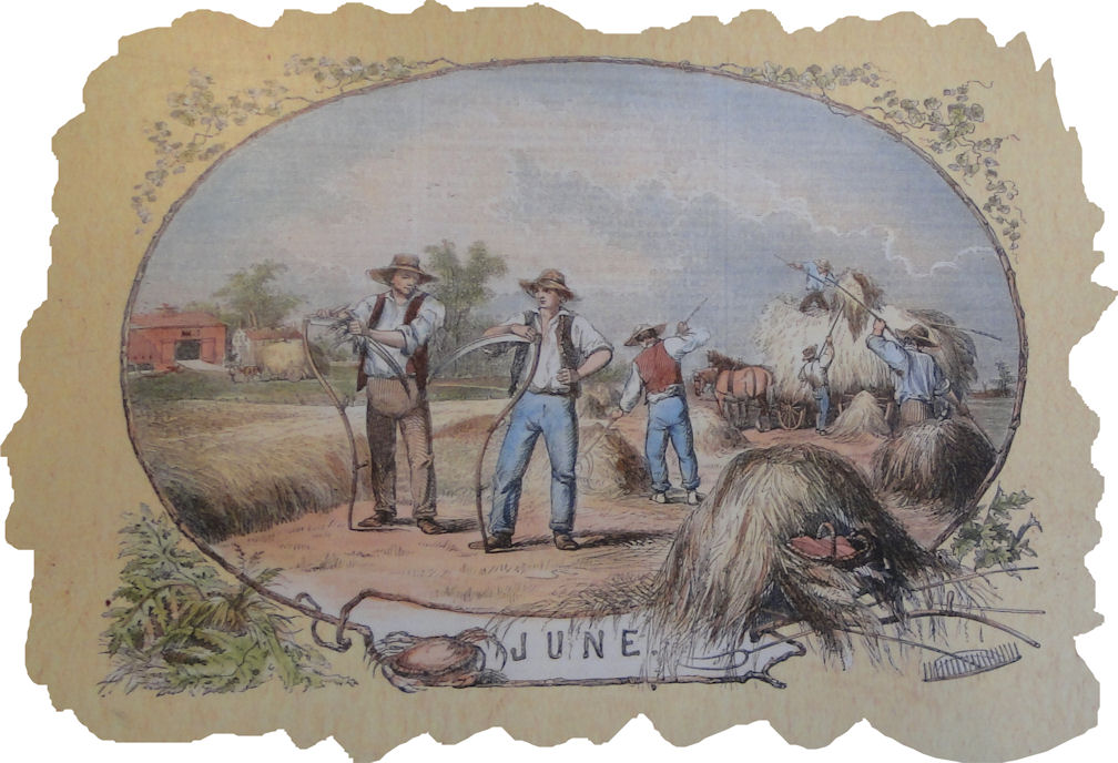 Harvest clipart colonial farming. Passion for the past
