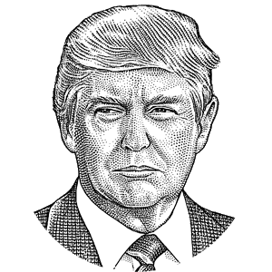 Hatch drawing portrait. Collection of free trump