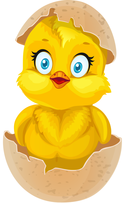 Chick transparent hatching. Png easter clip