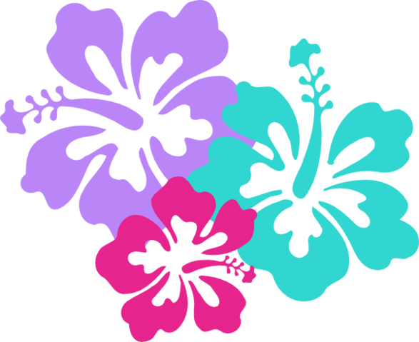 Hawaii flower png. Image girl meets world