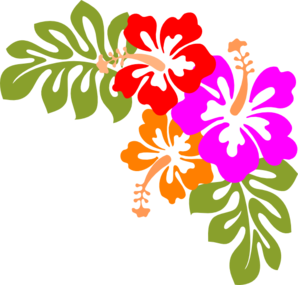 hawaii clipart shadow