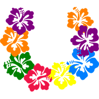 Download hawaii category png. Hawaiian clipart border line transparent library