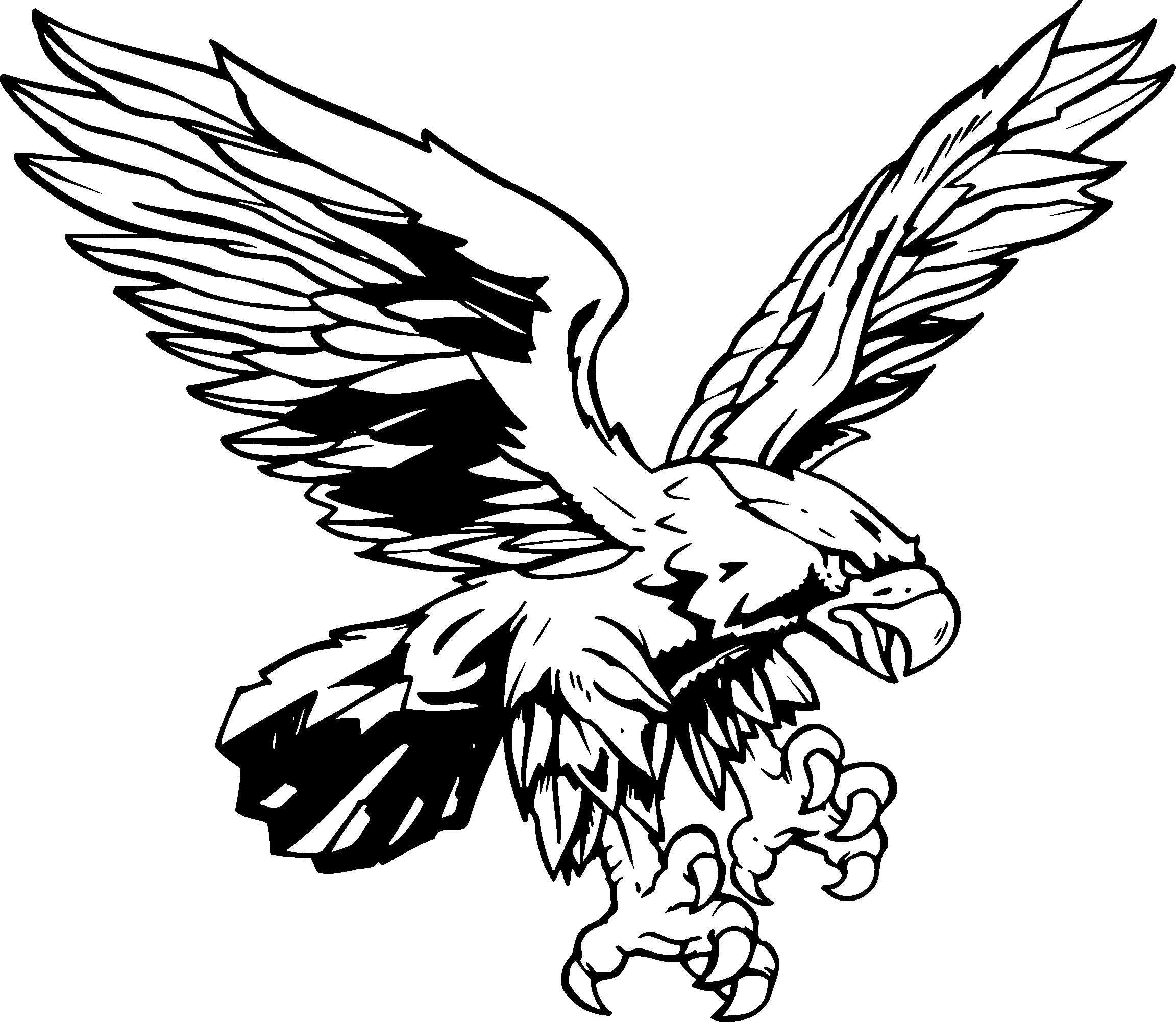 Red tailed bclipart free. Hawk clipart clip transparent stock