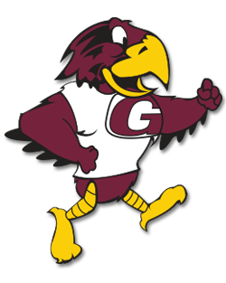 Hawk transparent mascot