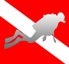 Scuba gamma center dive. Diving hawk png picture transparent download