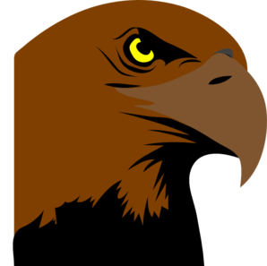 Hawk clipart raptor bird. Head panda free images