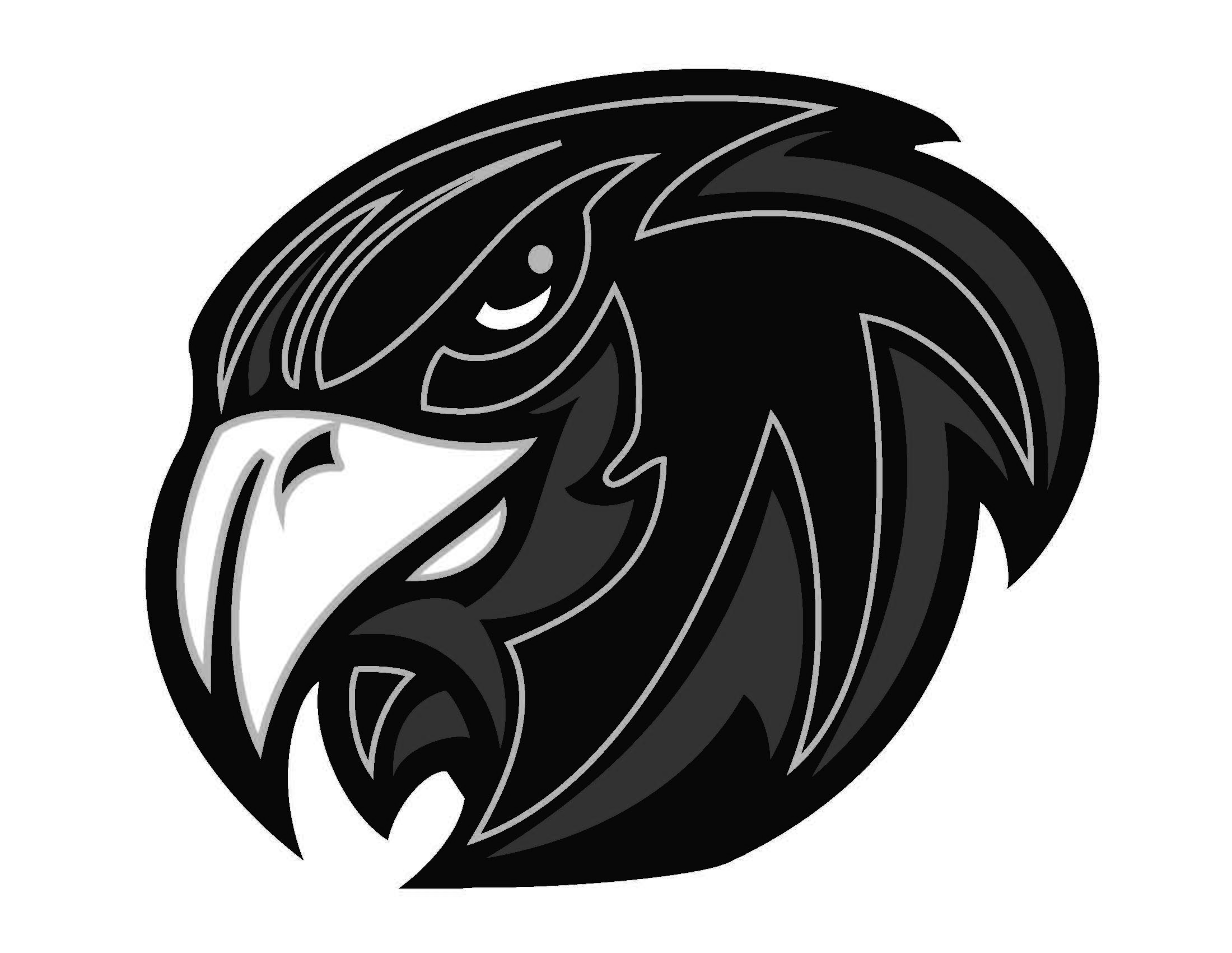 Bclipart free images i. Hawk clipart hawk head png library library