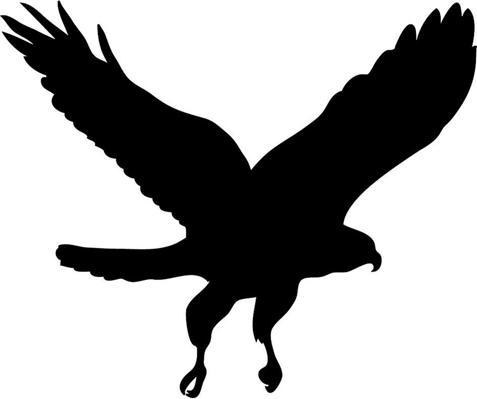 Hawk clipart raptor bird. Of prey silhouette at