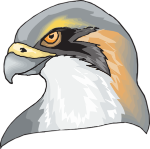 Clip art at clker. Hawk clipart hawk head picture black and white stock