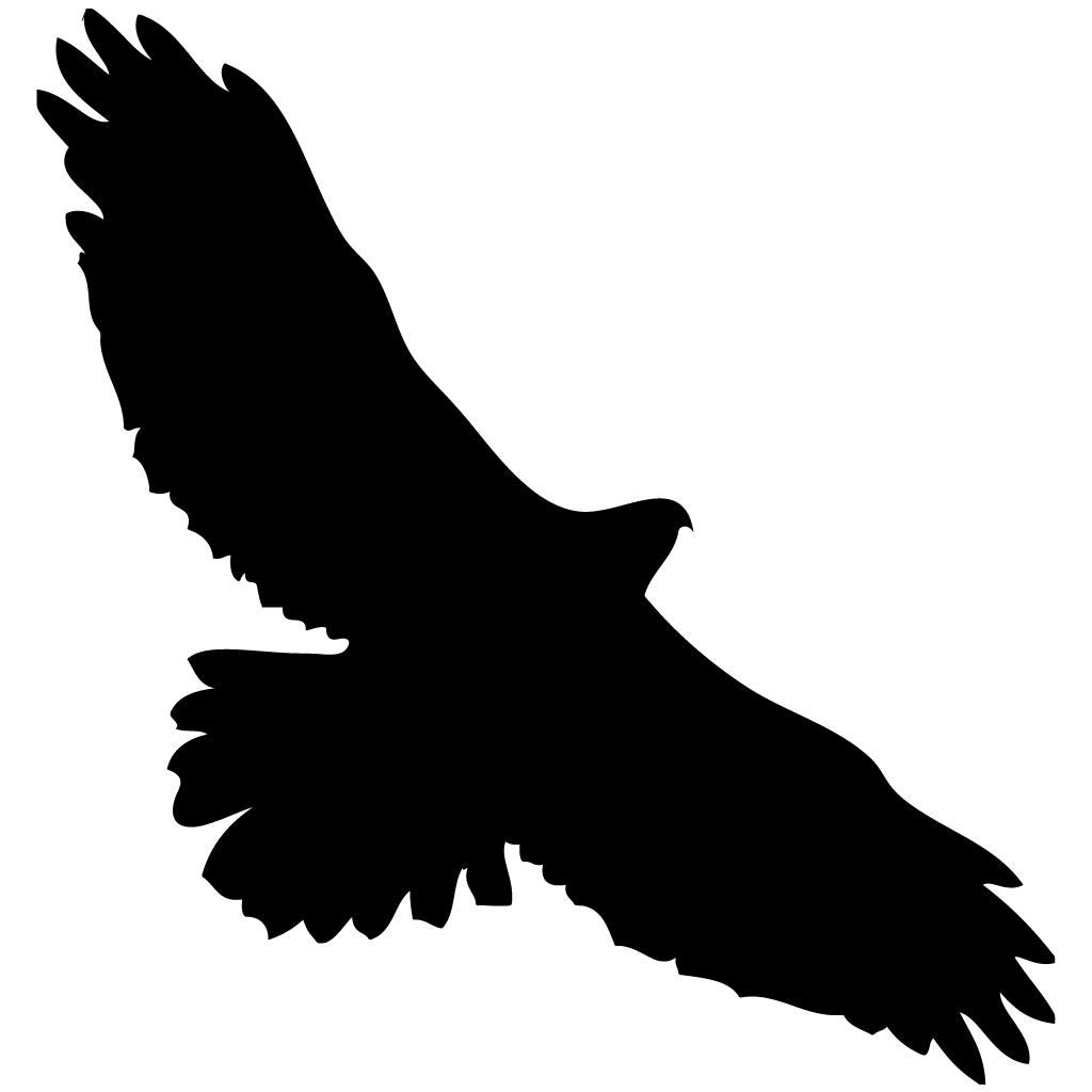 Hawk flying silhouette png. Red tailed overview all