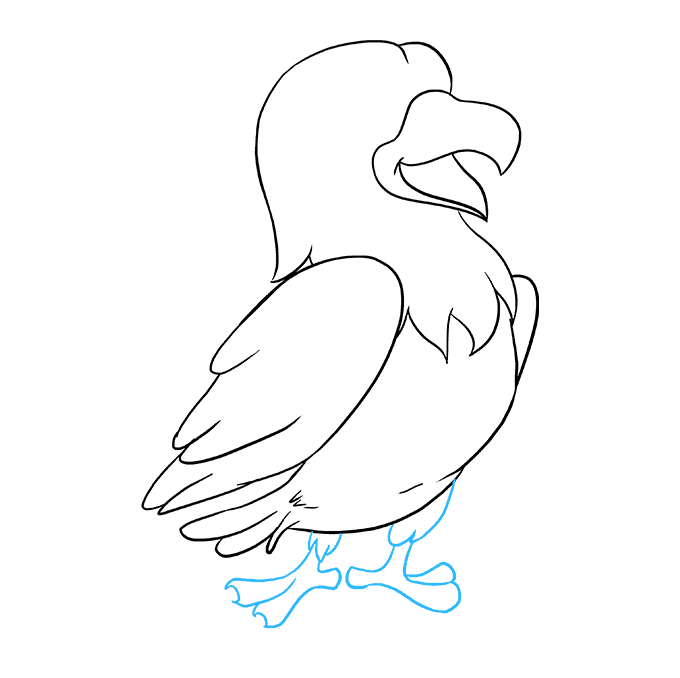 Drawing hawk flying. How to draw a