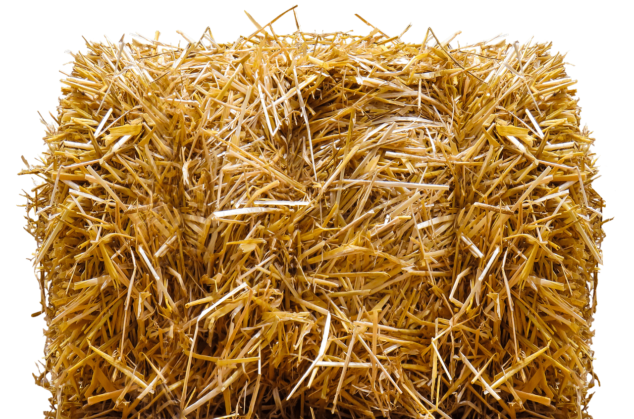 Hay transparent bale. Straw png stickpng miscellaneous
