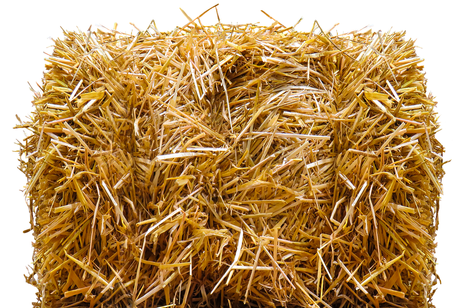 Hay transparent free clipart. Straw picture freeuse