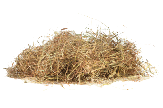hay transparent loose