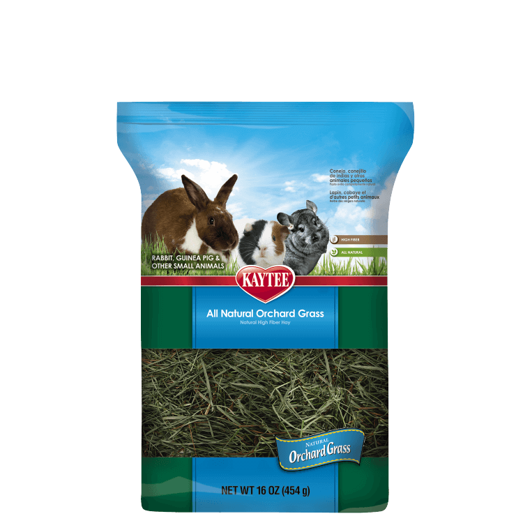 Hay transparent small. Orchard grass for pets