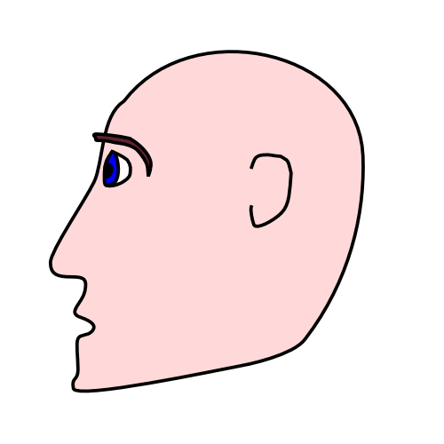 Head clipart. Free page of public