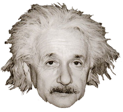 Head on stick png transparent. Einstein pictures free icons