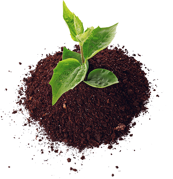 Healthy soil png. Complete gardening inc hydroponics
