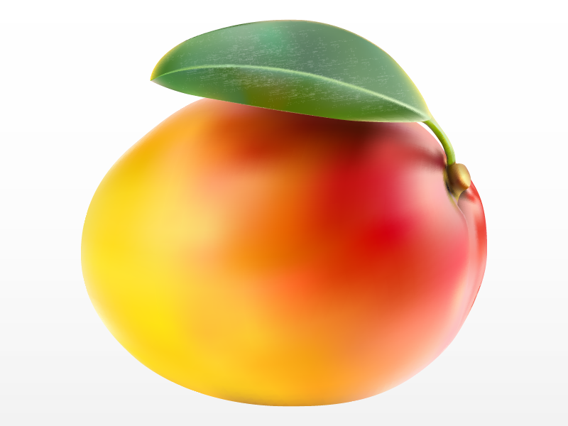 Healthy vector realistic. Mango with leaf meshfill