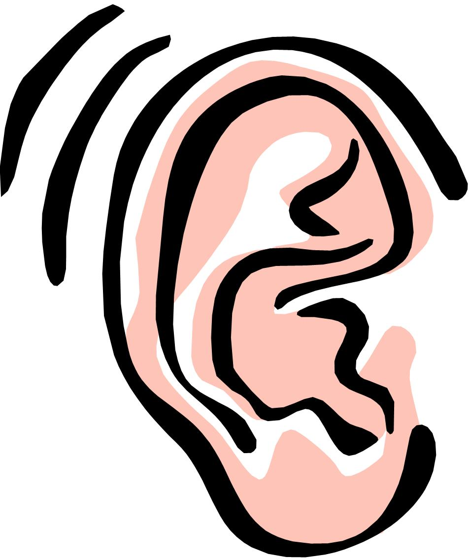 Hearing clipart large ear. Listening clip art panda