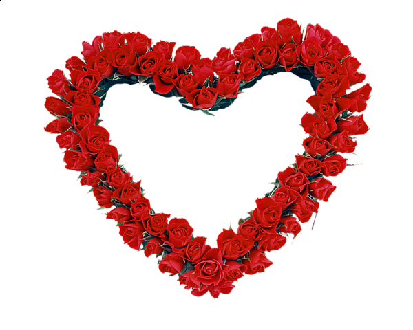 Image red roses transparent. Heart frame png clip black and white download